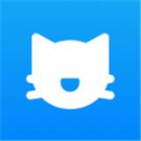 奇迹猫免费小说