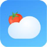 番茄天气预报