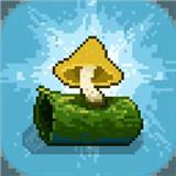 蘑菇物语新版