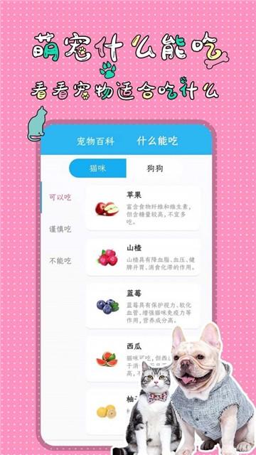 人猫人狗翻译交流器截图